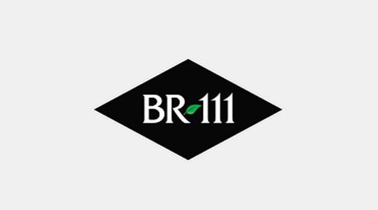 Tarimas de Madera BR111